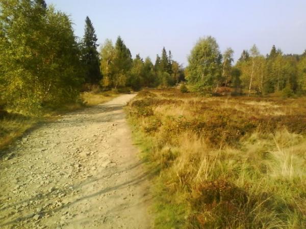 Szlak w okolicach Czupla fot. http://ecodzien.pl