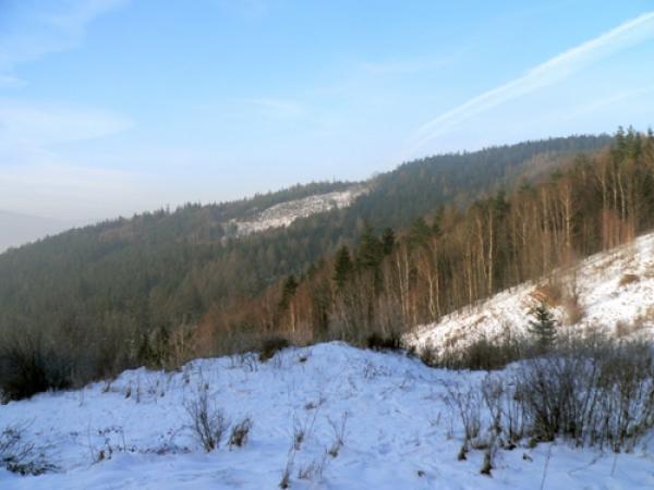 Łysa Góra ze szlaku na Magurkę